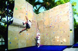 Climbing Wall b