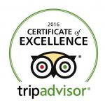 certificate-of-excellence-2016-large
