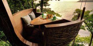 treepod dining