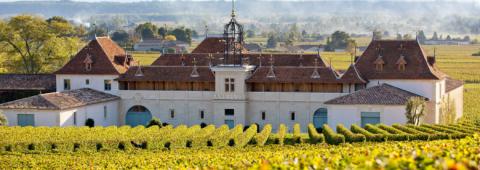 Chateau angelus wine dinner and tastings