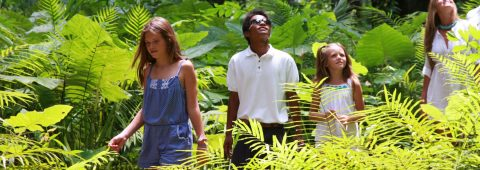Stay for good at Soneva Kiri