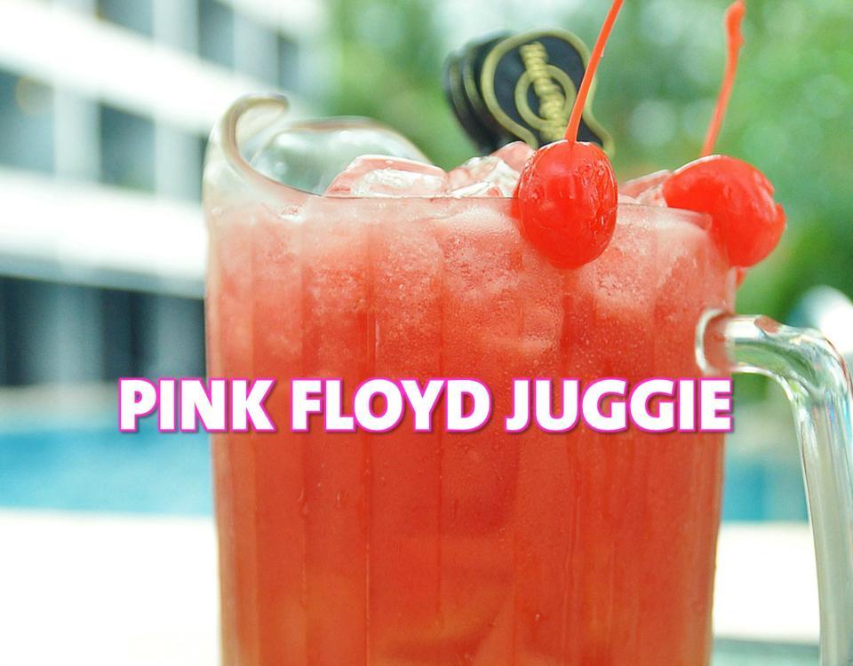 Pink Floyd JuggieWeb