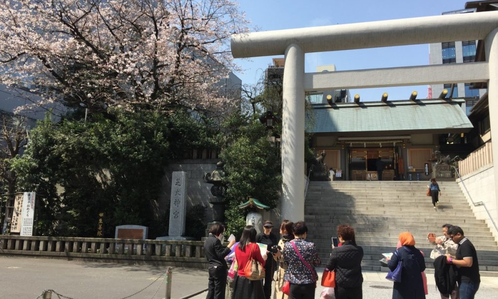 Ohanami (Sakura) Walk