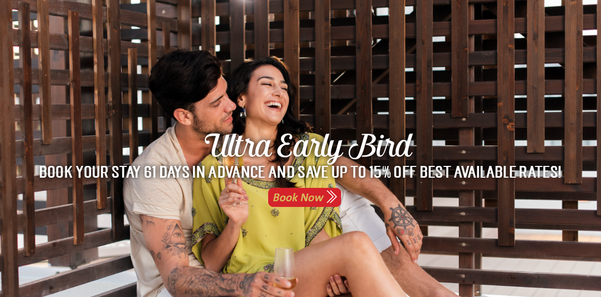 Ultra Early Bird 2019 Web Slider