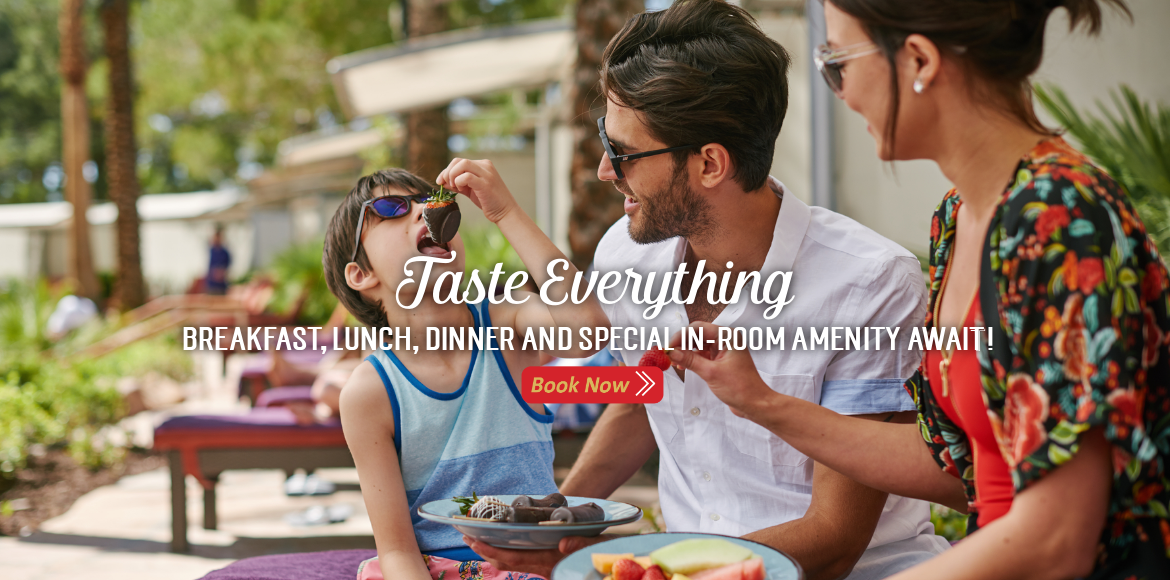 Taste Everything Web Slider 2019